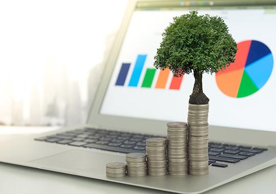 Employee Advantage Money Market Image